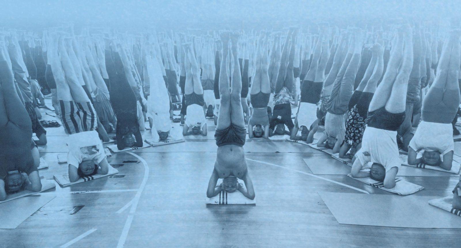 yoga ultimate freedom cvernovka